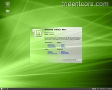 linuxmint9rc-large_002