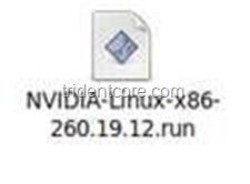 2010-11-04_143321